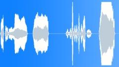 Voices Polish Female Single Young Phrase English Polish Various Take 04 Happy N Sound Effect