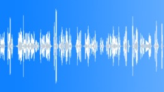 Voices Polish Female Single Young Phrase English Polish Various Take 14 911 Eme Sound Effect