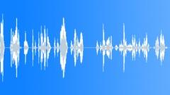 Voices Polish Female Single Young Phrase English Polish Various Take 19 Go Get Sound Effect