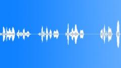 Voices Speech Voices Male Questions Food Sound Effect