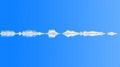 Voices Speech Voices Mixed Art Talk Sound Effect