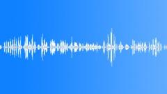 Voices Speech Voices Mixed Couple Laugh Sound Effect