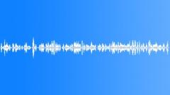 Voices Speech Voices Mixed Couple Pleasant Sound Effect