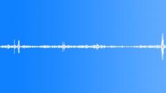 Basketball Voices Voices Pregame Setup Wood Sound Effect