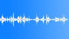 Conversations Walla Redneck Internal Voices Redneck Coarse Sparse Sound Effect