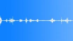 Sports Vox Close Shout Steven Sound Effect