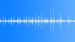 Animals Wolves Single Drinking Water Restless Rhythmic Dull Medium Close Exteri Sound Effect