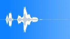 Voices Woman Witch Laugh Howl Shriek Sound Effect