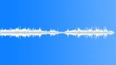 Foley Wood Wood Creaks Groan Low Abrupt Sound Effect