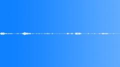 Foley Wood Wood Squeaks Groans Creaks Sound Effect