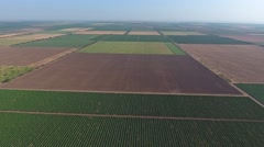 Aerial view on agricultural fields, Taman, Russia Stock Footage