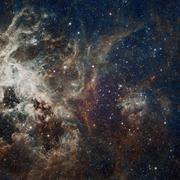 Stars nebula in space. Stock Photos