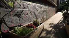 Hipster London: flower bed and grafitti Stock Footage