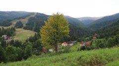 Beautiful green forest in mountains and cottages Stock Footage
