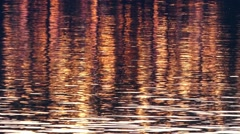 Very Beautiful Rattling the Surface of the Water During Sunset. Lake. Stock Footage