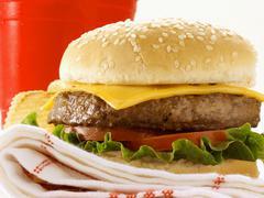 A Cheeseburger on a Dishcloth Stock Photos