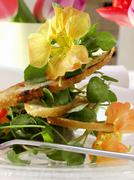 Watercress salad with flowers and toasted bread Stock Photos