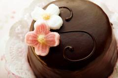 Sacher torte with sugar flowers Stock Photos