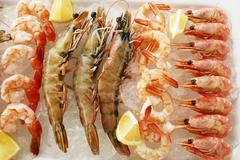 Various types of shrimps with lemons on crushed ice Stock Photos