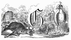 Still life: letter G, goat, geese, greens (illustration) Stock Illustration