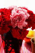 Bouquet of red and pink carnations Stock Photos