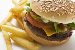 Cheeseburger and Fries on a Plate Stock Photos