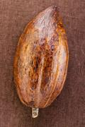 Cacao pod on brown background Stock Photos