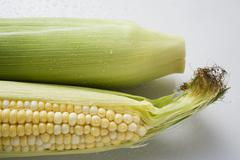 Two corn cobs with husks and silk Stock Photos