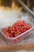 Redcurrants in plastic punnet Stock Photos