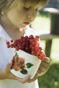 Child holding cup of redcurrants Stock Photos