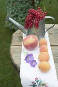Apricots, peach, redcurrants on table out of doors Stock Photos