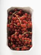 Redcurrants in cardboard punnet (overhead view) Stock Photos