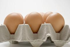 Brown eggs in an egg box Stock Photos