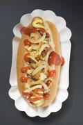 Hot dog with sauerkraut, mustard, ketchup and onions Stock Photos