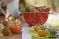 Various types of tomatoes on table out of doors Stock Photos