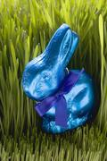 Blue chocolate Easter Bunny in grass Stock Photos