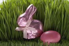 Pink Easter Bunny and Easter egg in grass Stock Photos
