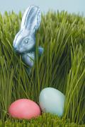 Easter Bunny and coloured eggs in grass Stock Photos