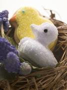 Easter sweets (chicks) in nest Stock Photos