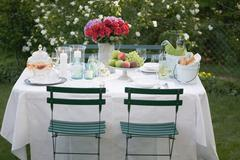 Table laid out of doors for a garden party Stock Photos
