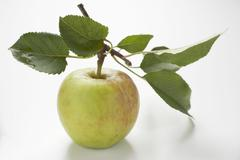 Apple with stalk and leaves Stock Photos