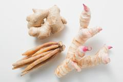 Ginger, galangal and fingerroot Stock Photos