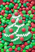 Christmas tree biscuit on red and green chocolate beans Stock Photos