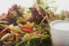 Salad leaves with vegetables and yoghurt dressing (detail) Stock Photos