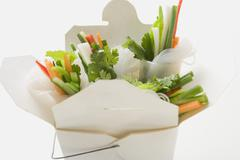 Rice paper rolls with vegetable filling in take-away container Stock Photos