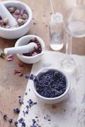 Rose and lavender flowers with mortar and apothecary bottles Stock Photos