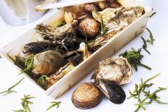 Various types of shellfish in crate Stock Photos