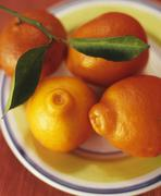 Several mandarin oranges with twig and leaves on a plate Stock Photos