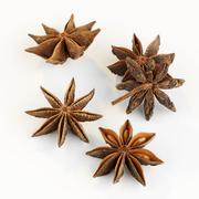 Star anise on white background Stock Photos