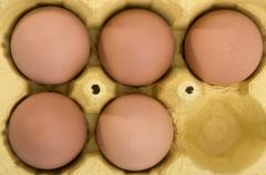 Five eggs in egg box (overhead view) Stock Photos